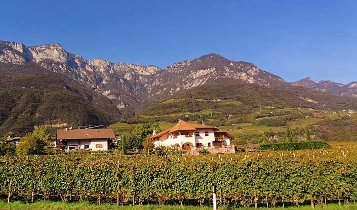 Alto Adige, the scenic home of  Lagrein