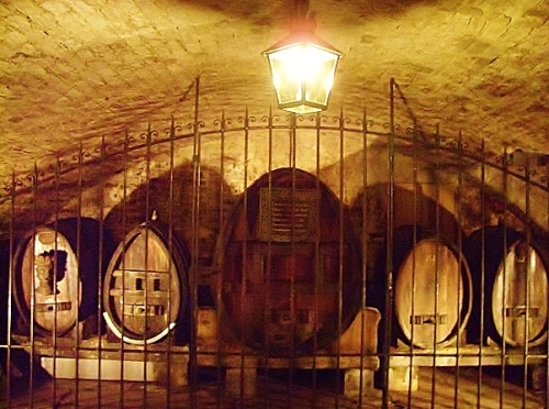 Ancient cellars in Strasbourg hospital