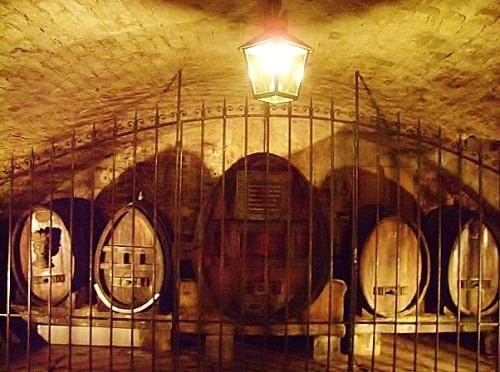 Ancient cellars in Strasbourg hospital